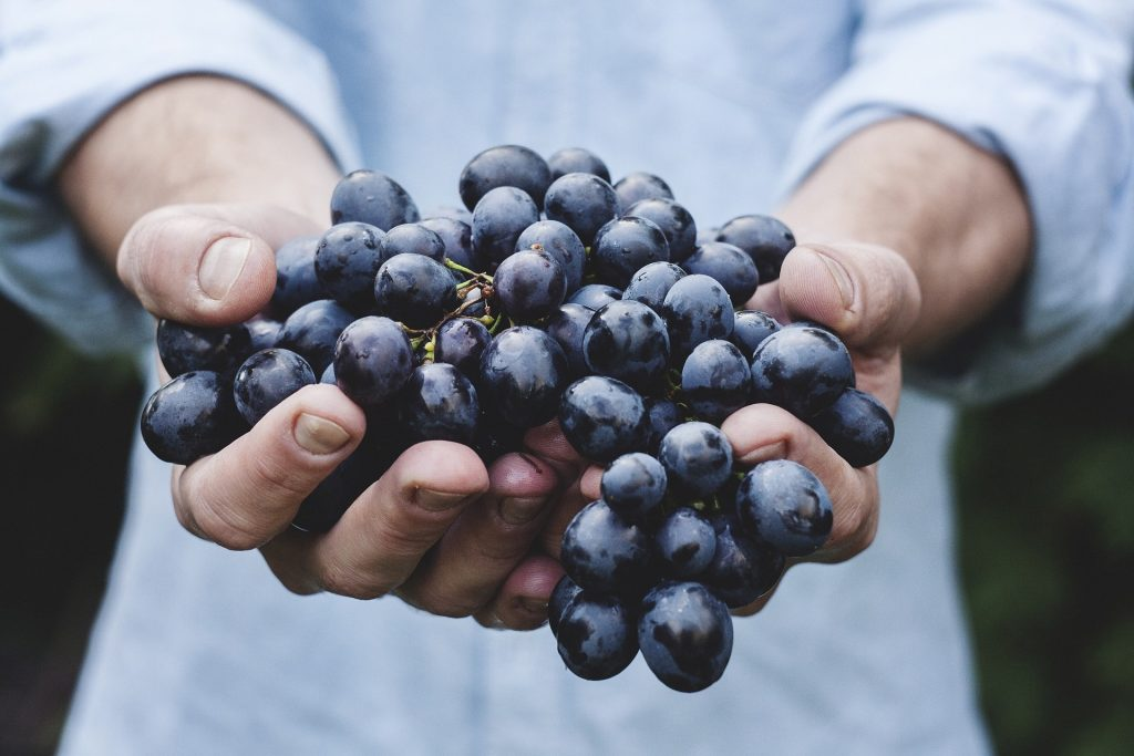 What Is Resveratrol and What Are Its Super Powers?