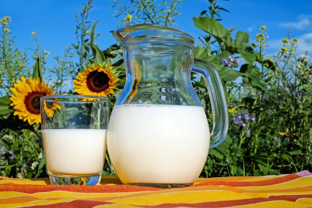 Dangers of Drinking Milk: Raw Milk vs. Pasteurized Milk